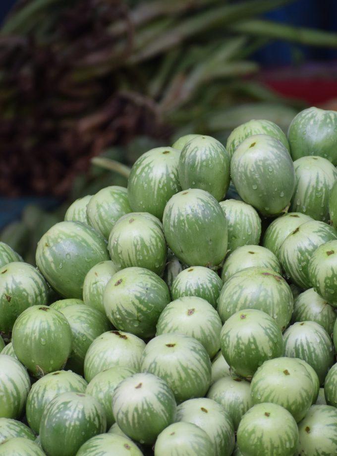Grüne Aubergine Thai Manee